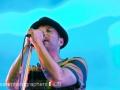 beatsteaks_auf_dem_chiemsee_rocks_festival_2012_17_20120824_1179977963