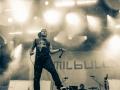 emil_bulls_auf_dem_alpen_flair_festival_2013_19_20130626_1577246847