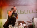 emil_bulls_auf_dem_alpen_flair_festival_2013_21_20130626_2002897055