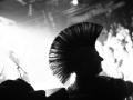 pogorausch_festival_2011_im_muenchener_backstage_11_20110312_1293036841