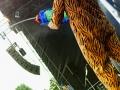 zebrahead_10_20110803_1902502994