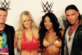 WWE Superstars Dolph Ziggler und Divas Natalya und Naomi zusammen mit Ex-Bundesligastar Tim Wiese bei der WWE Live-Show am 15.11.2014 in Frankfurt