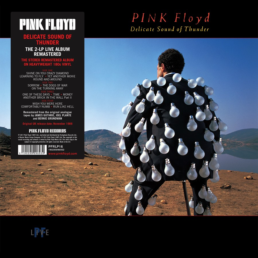 Pink Floyd Records - Delicate Sound Of Thunder - Remastered Vinyl